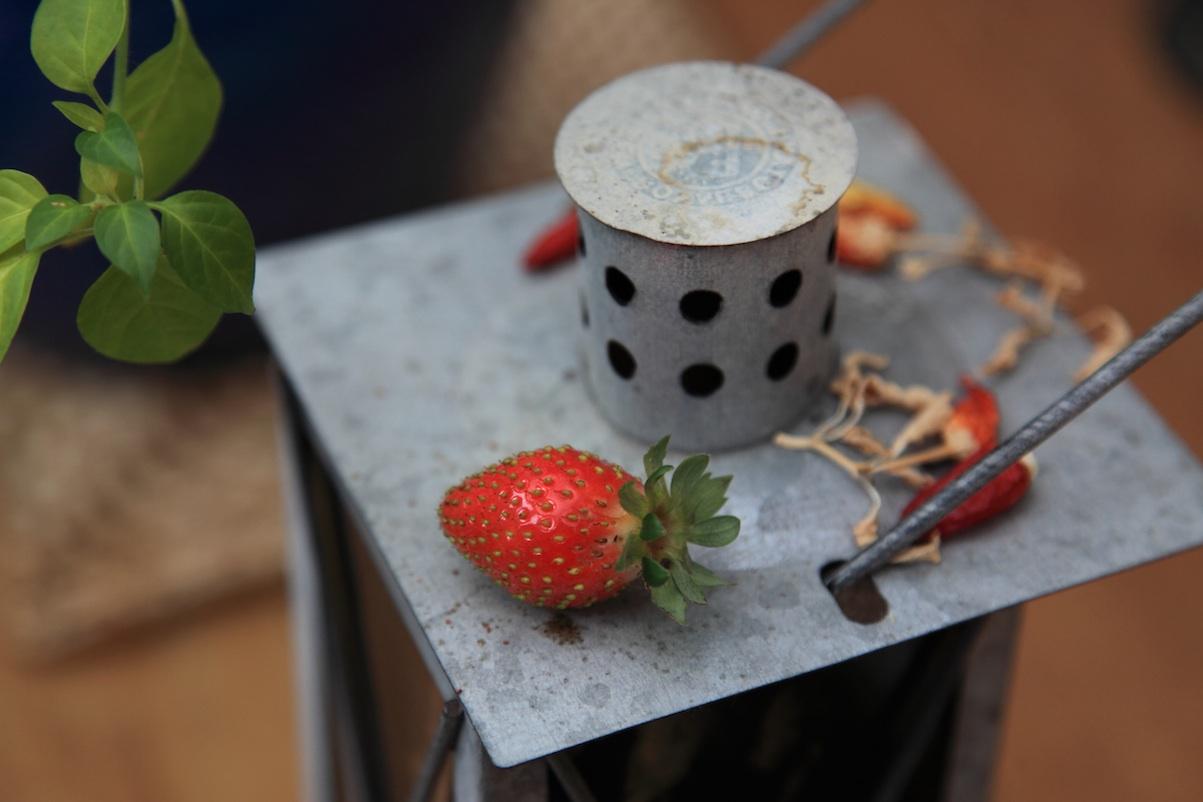 last strawberry copy