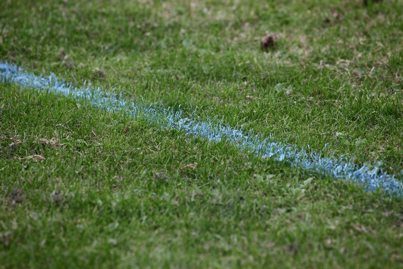 Blue lines football markings FA Cup