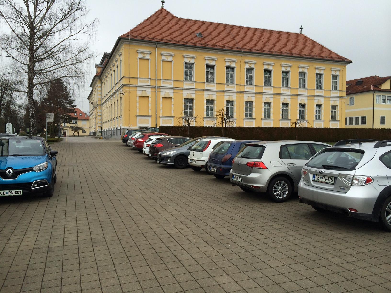 Slovenian Mental Hospital
